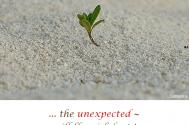the-unexpected--will-flourish-best