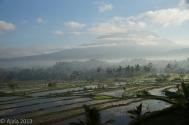 Bali August 2013