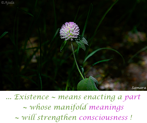 Existence--means-enacting-a-part--whose-manifold-meanings--will-strengthen-consciousness