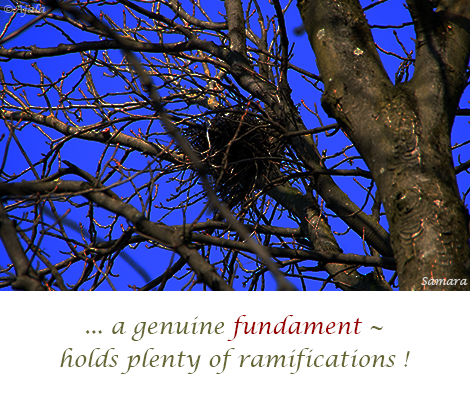 a-genuine-fundament--holds-plenty-of-ramifications!