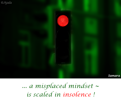 a-misplaced-mindset--is-scaled-in-insolence