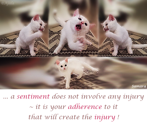 a-sentiment-does-not-involve-any-injury--it-is-your-adherence-to-it-that-will-create-the-injury
