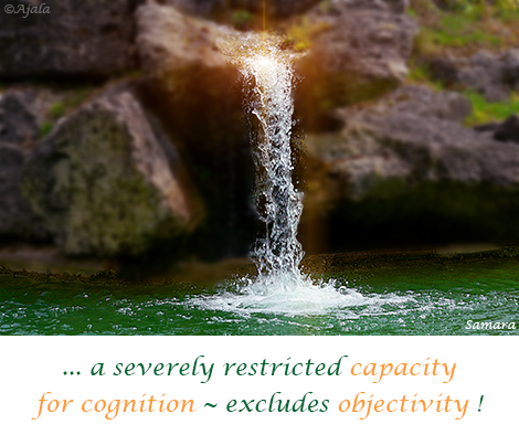 a-severely-restricted-capacity-for-cognition--excludes-objectivity
