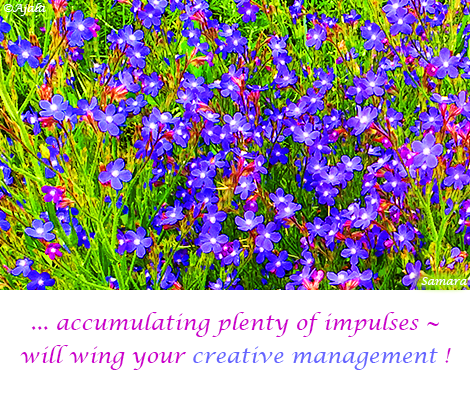 accumulating-plenty-of-impulses--will-wing-your-creative-management