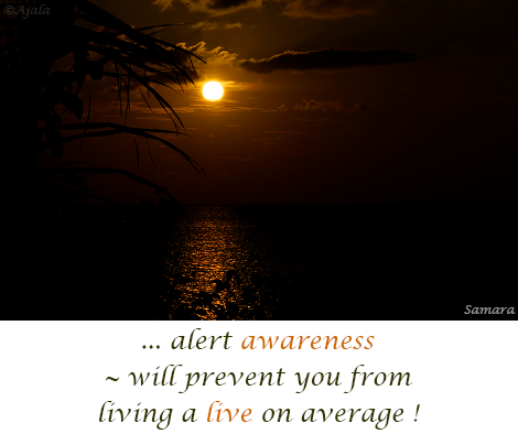 alert-awareness--will-prevent-you-from-living-a-live-on-average