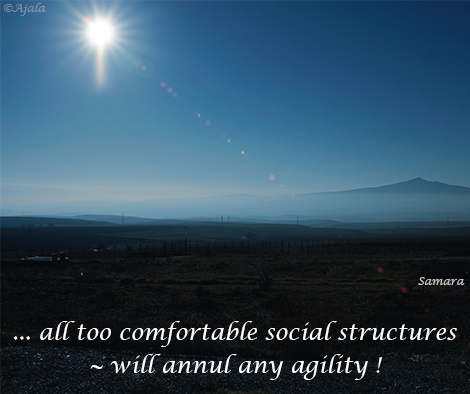 all-too-comfortable-social-structures--will-annul-any-agility