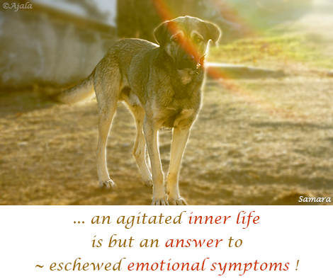 an-agitated-inner-life-is-but-an-answer-to--eschewed-emotional-symptoms