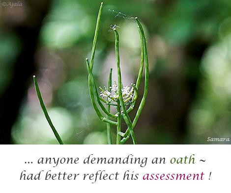 anyone-demanding-an-oath--had-better-reflect-his-assessment!