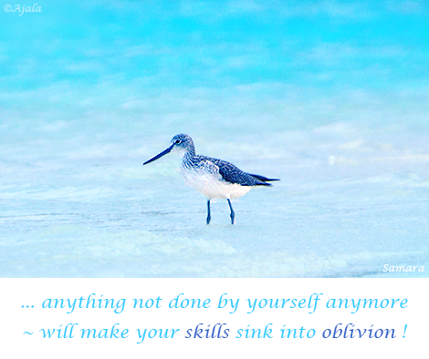 anything-not-done-by-yourself-anymore--will-make-your-skills-sink-into-oblivion