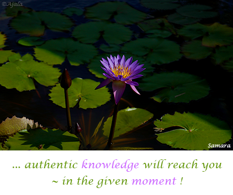 authentic-knowledge-will-reach-you--in-the-given-moment
