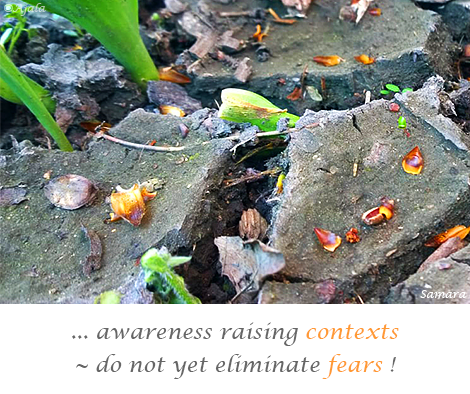 awareness-raising-contexts--do-not-yet-eliminate-fears
