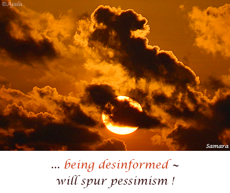 being-desinformed--will-spur-pessimism
