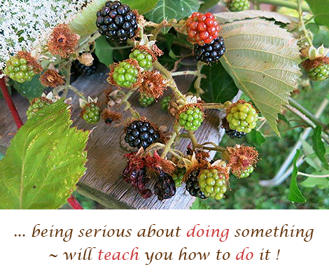 being-serious-about-doing-something--will-teach-you--how-to-do-it
