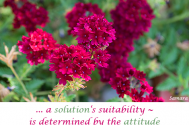a-solution-s-suitability--is-determined-by-the-attitude-towards-the-target