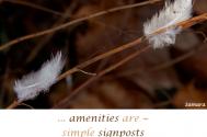amenities-are--simple-signposts-of-behavior