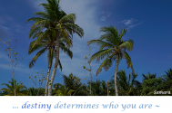 destiny-determines-who-you-are--purpose-is-what-you-have-chosen-to-be