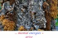 mental-energies--arise-from-boundless-ideas!