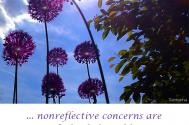 nonreflective-concerns-are-control-s-food-of-predilection