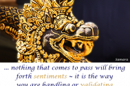 nothing-that-comes-to-pass-will-bring-forth-sentiments--it-is-the-way-you-are-handling-or-validating-these-incidents