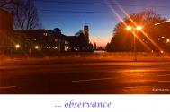 observance-will-dismiss-taken-for-grantedness