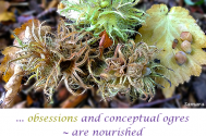 obsessions-and-conceptual-ogres--are-nourished-in-the-tug-war-against-your-self