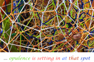 oppulence-is-setting-at-that-spot--which-WE-do-not-possess