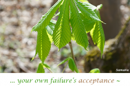 our-own-failure-s-acceptance--will-result-in-neuroses-rejecting-you
