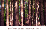 perform-crisis-intervention--terminate-assaults-on-the-self