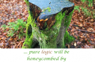 pure-logic-will-be-honeycombed-by-variables-of-the-heart