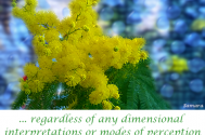 regardless-of-any-dimensional-interpretations-or-modes-of-perception--completeness-is-in-existence
