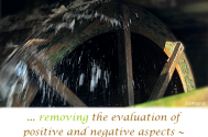 removing-the-evaluation-of-positive-and-negative-aspects--shall-cause-your-daily-struggle-to-cease