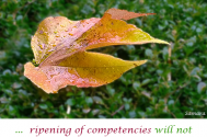 ripening-of-competencies-will-not-concede-social-personality-development