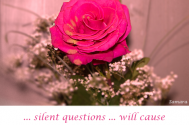 silent-questions-will-cause-internal-bleedings-in-your-development