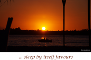 sleep-by-itself-favours-plain-thoughts