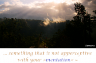 something-that-is-not-apperceptive-with-your-mentation--will-elude-your-understanding