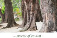 success-of-an-aim--is-the-career-itself