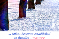 talent-becomes-established-in-hurdles--mastery-face-to-face-with-persistence