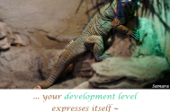 your-development-level-expresses-itself--in-your-perception-of-the-detail!