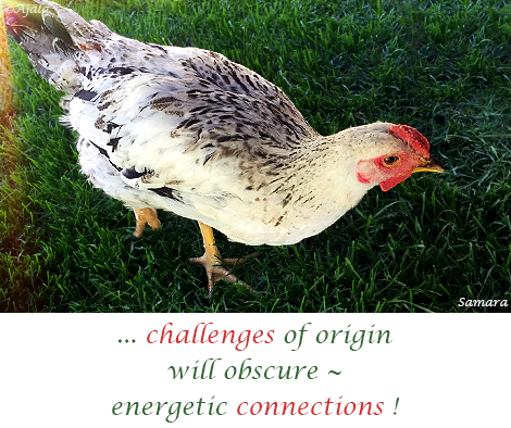 challenges-of-origin-will-obscure--energetic-connections