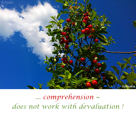 comprehension-does-not-work-with-devaluation