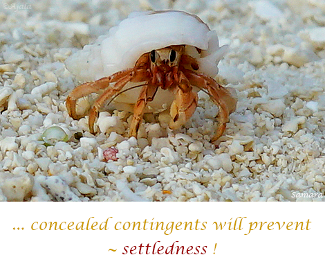 concealed-contingents-will-prevent--settledness