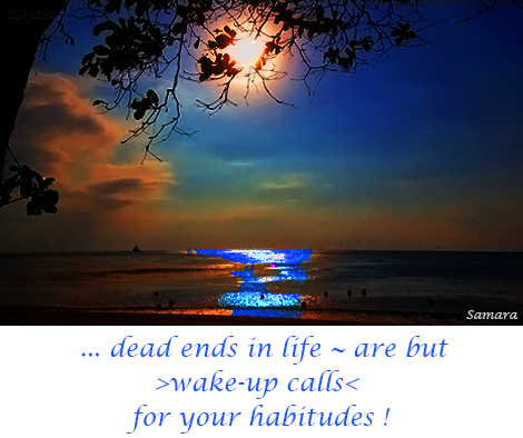 dead-ends-in-life--are-but-wake-up-calls-for-your-habitudes