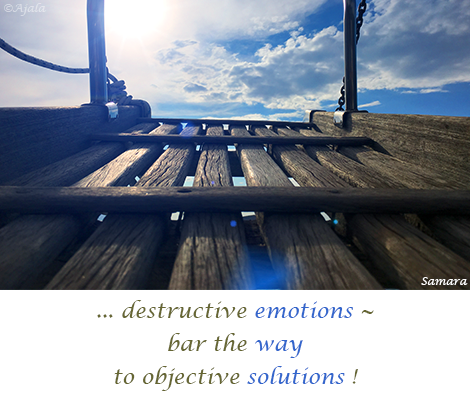 destructive-emotions--bar-the-way-to-objective-solutions