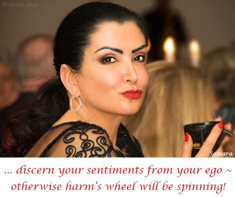 discern-your-sentiments-from-your-ego--otherwise-harm-s-wheel-will-be-spinning