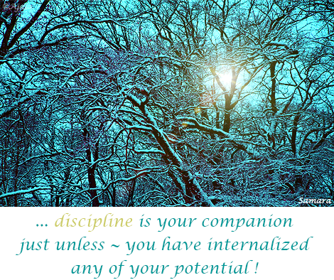 discipline-is-your-companion-just-unless--you-have-internalized-any-of-your-potential