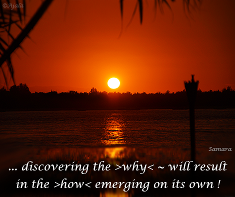 discovering-the-why--will-result-in-the-how-emerging-on-its-own
