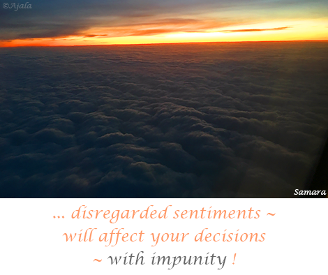 disregarded-sentiments--will-affect-your-decisions--with-impunity