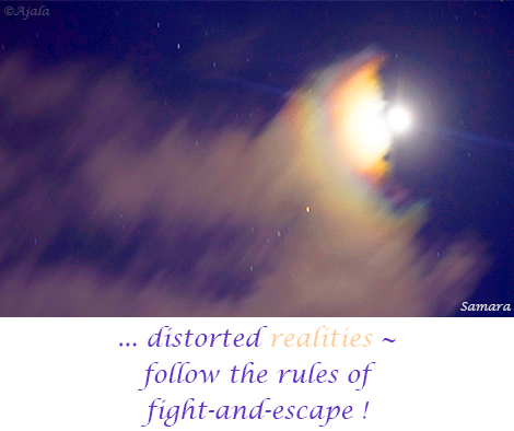 distorted-realities--follow-the-rules-of-fight-and-escape
