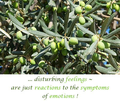 disturbing-feelings--are-just-reactions-to-the-symptoms-of-emotions