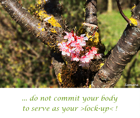 do-not-commit-your-body-to-serve-as-your-lock-up